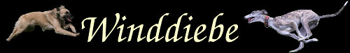 Winddiebe
